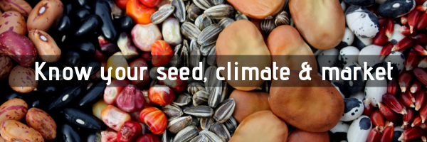 Selecting Your Seeds, Blog May 2019 (2)